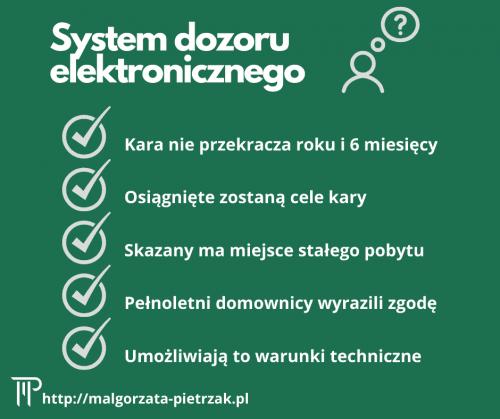 kara w systemie dozoru elektronicznego
